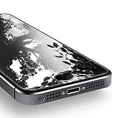 Apple iPhone 5S用強化ガラス 液晶保護フィルム T02 アップル クリア